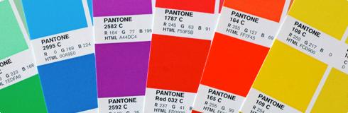rgb pantone color bridge swatch books - Pantone Color Swatch Book